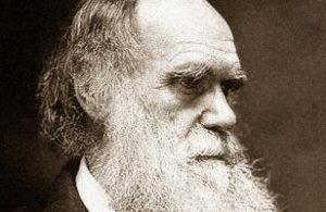 3 300x195 - Чарьлз Дарвин