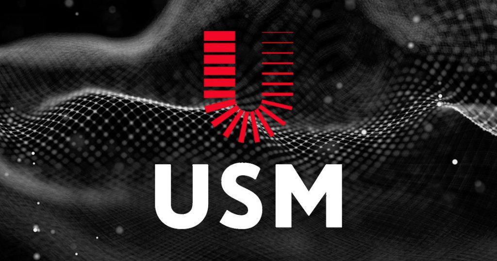 USM Holdings